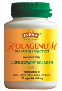 Kolagenum
